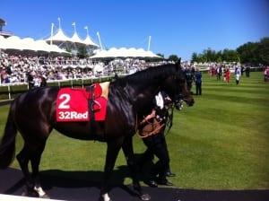 Parade-ring-Horse-racing